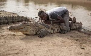 The Pros and Cons of Having a Pet Alligator black man on alligator