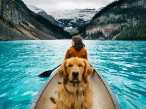 Our Guide to Traveling SAFELY With Your Pet Dog + Girl on boat