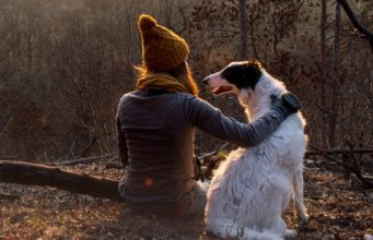 Our Guide to Traveling SAFELY With Your Pet Girl + Dog