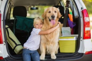 Our Guide to Traveling SAFELY With Your Pet Kid + Girl