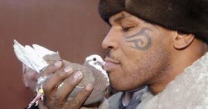 The Bizarre and True Story of Mike Tyson and his Pet Pigeons Kissing