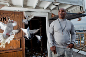 The Bizarre and True Story of Mike Tyson and his Pet Pigeons flying