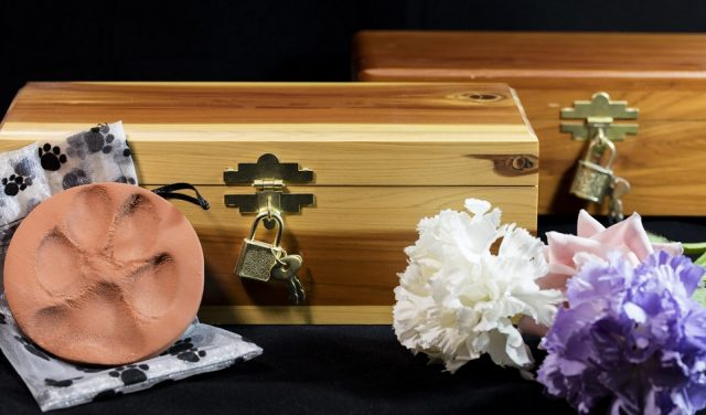 doggy funeral